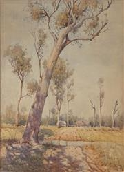 Sale 8881A - Lot 5050 - William Lister Lister (1859 - 1943) - The Leaning Gum 61.5 x 44 cm