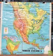 Sale 8451 - Lot 1043 - Chas H Scally Educational Map of North America