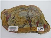 Sale 8431A - Lot 676 - Coprolite (Jurassic Period - Morrison Formation), Utah USA