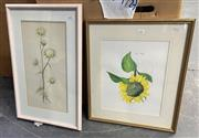 Sale 9019 - Lot 2071 - Robyn Horsburgh & Artist Unknown (2 Works) Sunflower, 1996 & Carlisle Thistle, 1980, watercolour, frame: 54 x 44 cm and 61 x 39 cm,