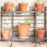 Sale 8550H - Lot 235 - An outdoor iron pot stand, together with six terracotta pots, shelf H 77 x W 101cm