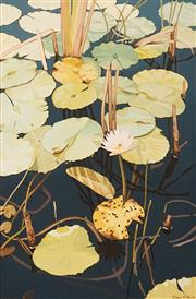 Sale 8622 - Lot 2018 - Cam Clarke (1927 - ) - Water Lilly no. III 61.5 x 40.5cm