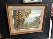 Sale 8836 - Lot 2059 - Ronald Peters - Scene at Kangaroo Valley, oil on board, frame size - 50 x 60m, signed lower right