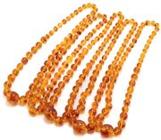 Sale 8915 - Lot 333 - FIVE POLYBERN AMBER GRADUATED BEAD NECKLACES; 1.2-3cm near round beads, lengths 73 & 77cm.