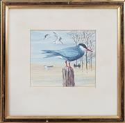 Sale 8973 - Lot 2026 - Robin Hill Waterbirds 1967 watercolour and gouache, 26 x 26cm (frame), signed and dated lower right