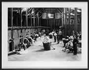 Sale 8858A - Lot 5012 - Artist Unknown - Shearing in a Woolshed, 1930s 87 x 110 (frame size)