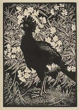 Sale 9130 - Lot 2011 - Lionel Lindsay Curassow and Oleander lithograph, 14 x 10cm, 38 x 34cm (frame) signed in plate -