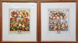 Sale 9254 - Lot 2077 - A Pair of offset lithographs of Fruit after original engravings, frame: 61 x 53 cm -