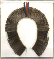 Sale 8758 - Lot 58 - South American Feathered Head Dress, possibly Kayapo, framed