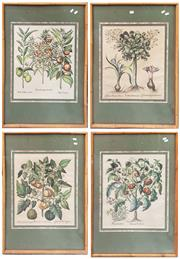Sale 8868 - Lot 1100 - Four Hand Coloured Botanical Prints, after 17th century originals, in bamboo mounted frames