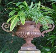Sale 8568A - Lot 30 - A cast iron double handled urn with leaf shaped handles and ribbed lower body, on a composite pedestal, D approx. 88cm, H 113cm