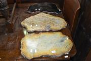 Sale 8115 - Lot 1492 - Set of 3 Petrified Wood Slab