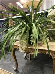 Sale 8787 - Lot 1023 - White Cymbidium Orchid With Eighteen Spikes