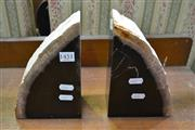Sale 8115 - Lot 1451 - Petrified Wood Book Ends