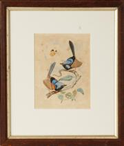Sale 9048A - Lot 71 - JM Castle - Willy Wagtails signed lower centre