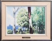 Sale 8269A - Lot 52 - Malcolm Warner - Queensland Gums