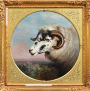 Sale 8174A - Lot 585 - Abel Hold (1815 - 1891) - The Ram, 1888 62 x 62cm