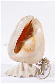 Sale 9007 - Lot 5 - Conch Shell Lamp H: 36cm