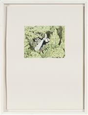 Sale 8753 - Lot 2004 - Linden Simmons (1983 - ) - Found Yesterday, 2010 12 x 15cm