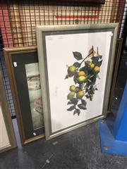 Sale 8833 - Lot 2074 - 2 Works: A hand-coloured lithograph of Lemons, 56 x 76cm (frame) , together with Decorative Print of Townscape