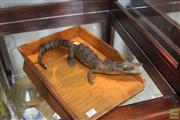 Sale 8217 - Lot 129 - Taxidermy Crocodile on Timber Tray