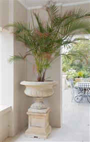 Sale 8470H - Lot 1 - A pair of large composite stone squat urns with half fluted body on square pedestal, H 127cm with palms