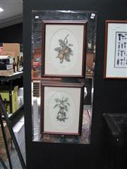 Sale 7379B - Lot 56 - Pair of mirror framed bevelled edge panels containing prints of fruits by Grafiche Tassetti, Italy - each 113 x 52cm