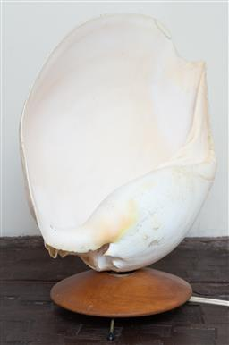 Sale 9164H - Lot 42 - A conch shell lamp raised on tripod base, total height 34cm x width 27cm