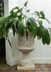 Sale 8990H - Lot 1 - Large composite urn with classical decoration containing a peace lily. Height 103cm x 61cm