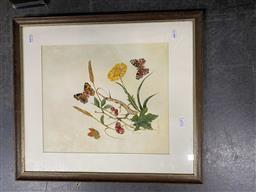 Sale 9159 - Lot 2038 - Martyn Bailey Still Life with Butterflies, 1980 watercolour 55 x 48cm (frame) signed lower left -