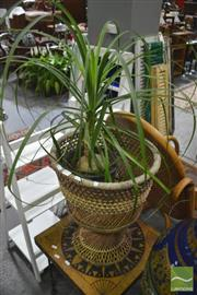 Sale 8299 - Lot 1054 - Plant in Planter