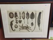 Sale 8648B - Lot 2047 - John Winch - Found Objects, 1984, etching ed. AP, 52 x 66cm (frame) signed and dated lower right