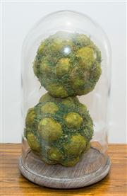 Sale 8308A - Lot 158 - A glass dome on timber base with faux moss spheres, total H 56cm