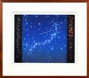 Sale 8380A - Lot 13 - Tim Storrier (1949 - ) - The Night Sky and Flora 39.5 x 50cm