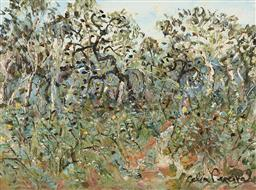 Sale 9214 - Lot 513 - CELIA PERCEVAL (1949 - ) Yellow Banksias at Mt Buckety oil on paper 54 x 73 cm (frame: 83 x 103 x 3 cm) signed lower right