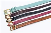 Sale 8926H - Lot 31 - Five thin snakeskin print belts in various colours