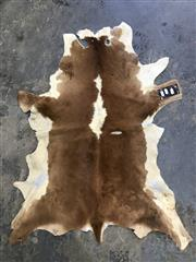 Sale 9039 - Lot 1065 - Small Calf Pelt in Brown and White (110 x 83cm)
