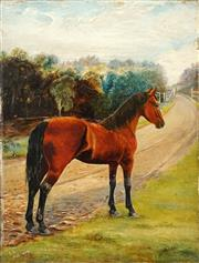 Sale 8519A - Lot 5066 - Artist Unknown (Late C19th) - Chestnut Horse, 1896 41 x 30.5cm
