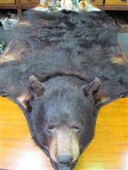 Sale 8431A - Lot 654 - North American Bear Skin with Taxidermy Head and Claws