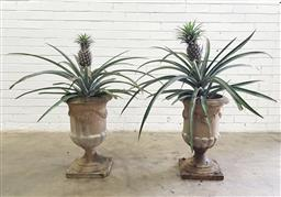 Sale 9102 - Lot 1286 - Pair of pineapple plants in stoneware urns, height of urns 58cm