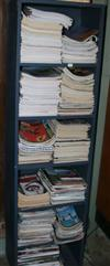 Sale 7670A - Lot 301 - Six shelf blue bookcase and one other