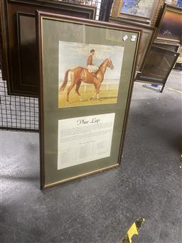 Sale 9123 - Lot 2090 - a decorative of Pharlap and his stake winnings, frame: 84 x 54 cm,