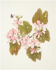 Sale 8475 - Lot 556 - Peter Longhurst (1922 - ) - Orchids and Butterflies, 1974 44 x 36cm