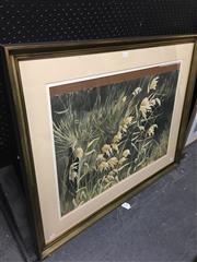 Sale 8690 - Lot 2068 - M Wills - Growing Wild, watercolour, 81.5 x 101cm (frame size), signed lower right under mount