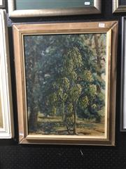 Sale 8841 - Lot 2019 - Shirley Rouen - Untitled (Tree Study) 49.5 x 39cm