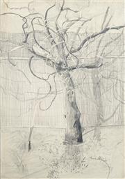 Sale 8466A - Lot 5087 - Anne Hall (1946 - ) - Barren Tree, 1968 101.5 x 70cm (sheet size)