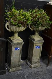 Sale 8039 - Lot 1010 - Pair Of Sandstone Urns On Pedestals Containing Orchids
