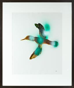 Sale 9190H - Lot 432 - Sidney Nolan Flying Feathers, Oil on Paper, 74x60cm Signed lower right.