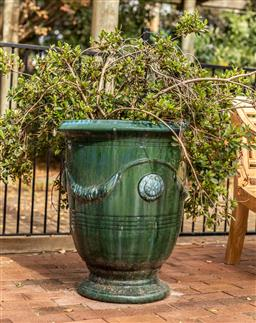 Sale 9191W - Lot 435 - A pair of large green Anduze style terracotta planters with mature azaleas . H with plant 1300mm Urn H. 780mm