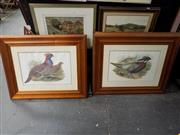 Sale 8422T - Lot 2030 - Collection of four framed bird prints, frame size 78 x 96cm (each)